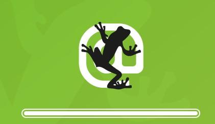Screaming Frog Nedir? Ne işe Yarar?