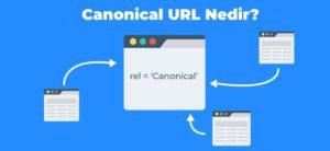 Canonical url nedir